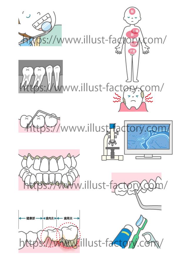 歯のイラスト★優しいイメージで一般の方にわかりやすいタッチ★