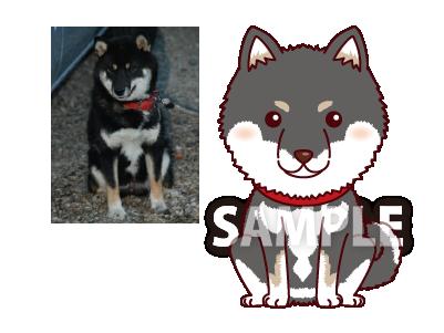 P4-16 特徴を捉えたシンプルな似顔絵制作例 黒柴犬
