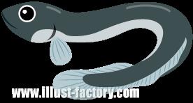 A136-04 魚イラスト ウナギ・鰻