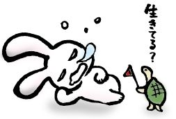 A56-04 ウサギのイラスト