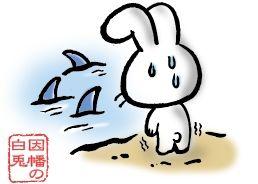 A56-06 ウサギのイラスト