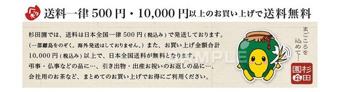 C69-07 亀のキャラクターデザイン