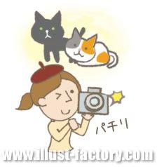 G118-08 猫、写真を撮る女性