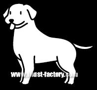 G185-07 犬のイラスト