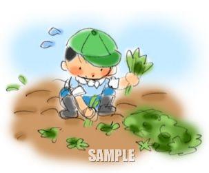 G19-04 農業 収穫を手伝う子供挿絵