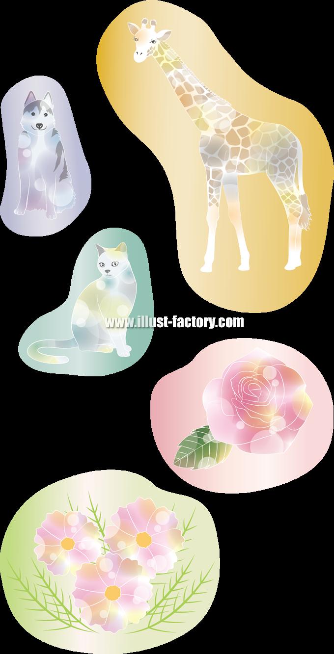 G233 動物、植物 キリン、犬、猫、バラ、コスモス