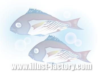 G252-03 魚