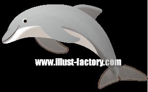 G255-05 イルカのイラスト