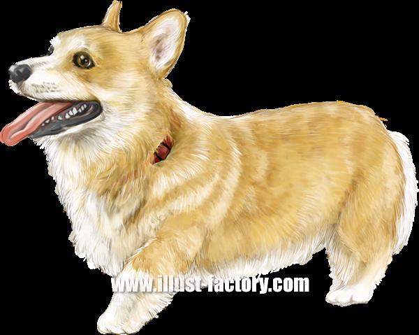 G402-02 リアルタッチ動物イラスト制作 犬