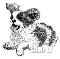 G49-01 手描き キャバリアのイラスト