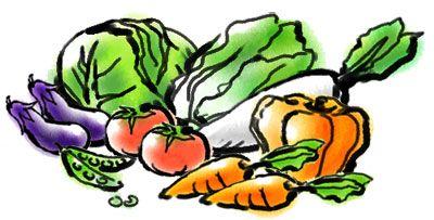 H07-01 野菜のイラスト制作例