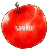 H07-20 リンゴのイラスト制作例(色鉛筆風)