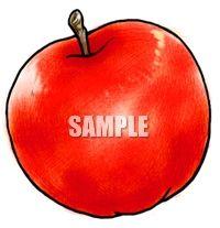 H07-26 リンゴのイラスト制作例(色鉛筆風)