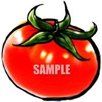 H07-17 トマトのイラスト制作例(筆絵風)