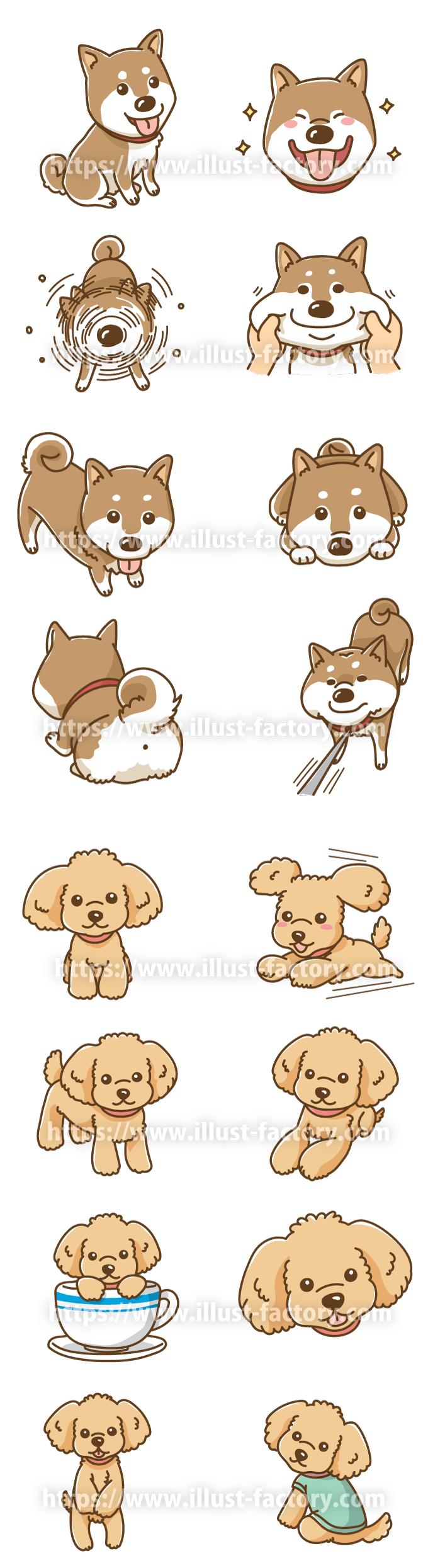H100 犬のイラスト 柴犬、トイプードル