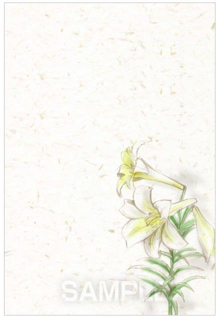 H11-02 百合の手描きイラスト制作例