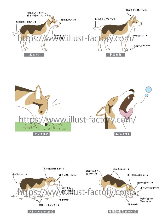 H126-02 犬のしぐさのイラスト
