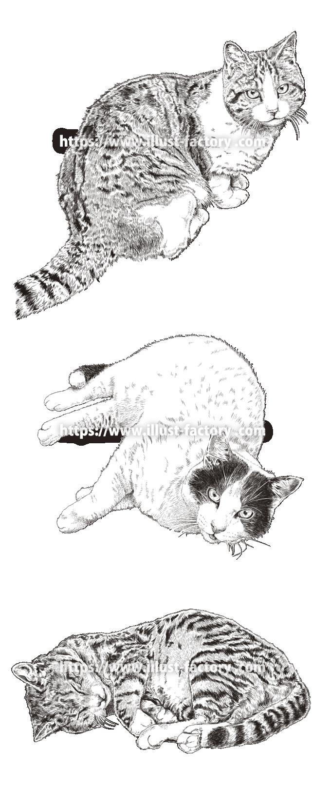 H128-01 リアルペン画風タッチの猫のイラスト モノクロ