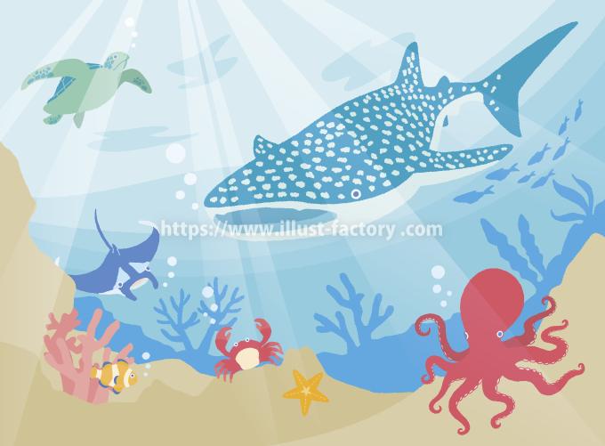 H132-01 かわいらしいタッチの海洋生物イラスト