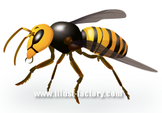 S19-02 害虫イラスト ハチ(蜂)