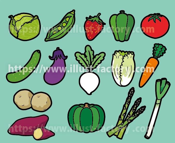幼児教育学習教材イラスト 野菜の種類 H153-2
