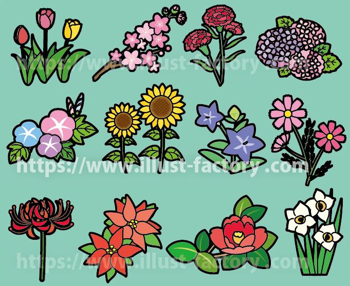 幼児教育学習教材イラスト 季節の花の種類 H153-3